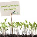marketingstrategies2016